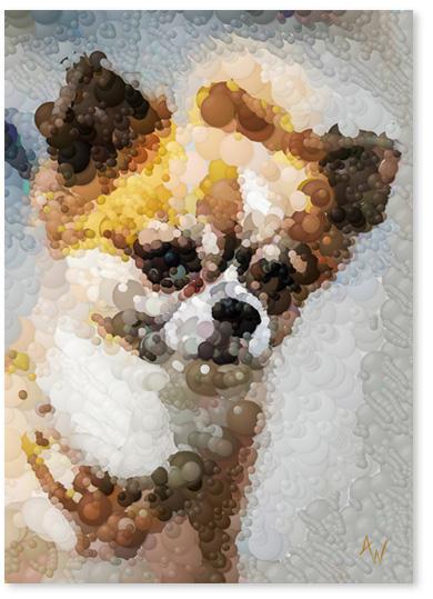 reklam_dog_400